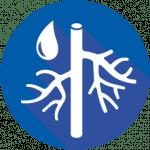 Vascular Iconv2