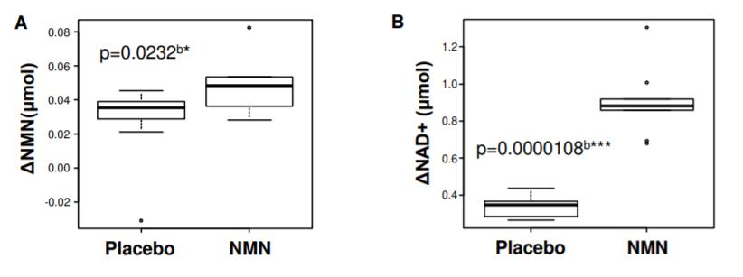 12 week nmn human trial muscle 1